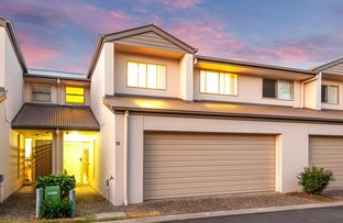 Picture of 51/2 Weir Drive, Upper Coomera QLD 4209
