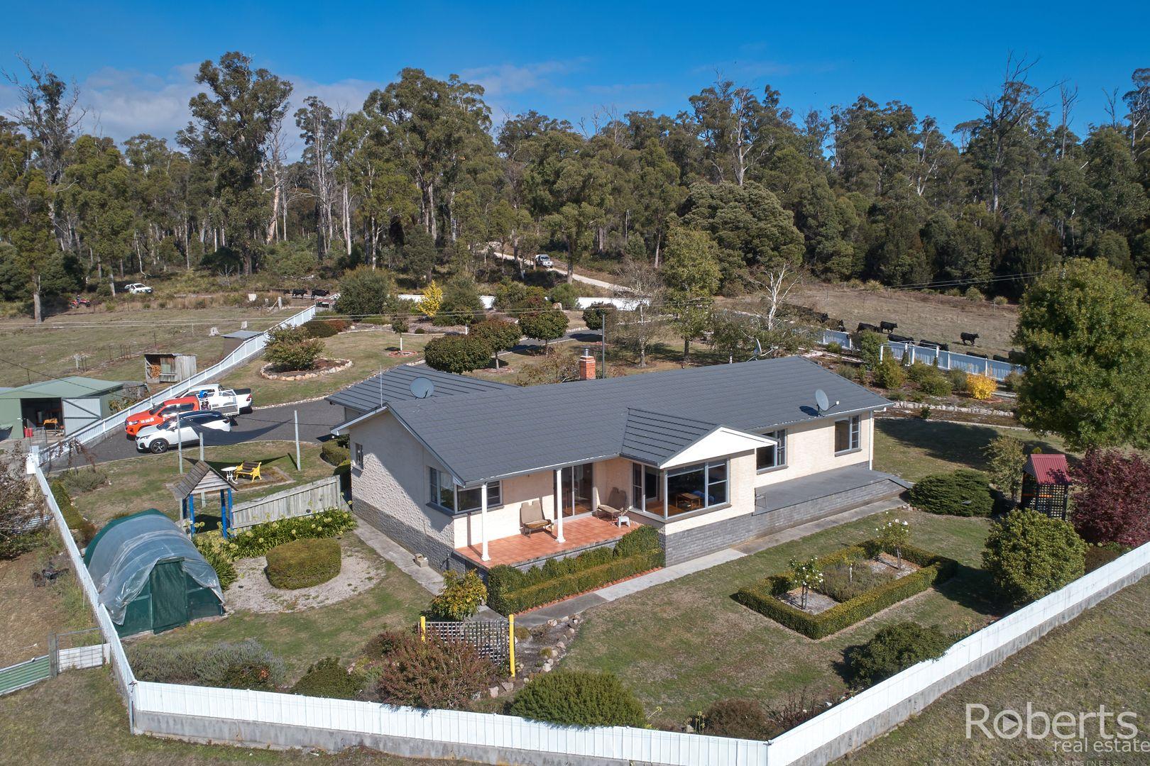 480 Jensens Road, Scottsdale TAS 7260, Image 0