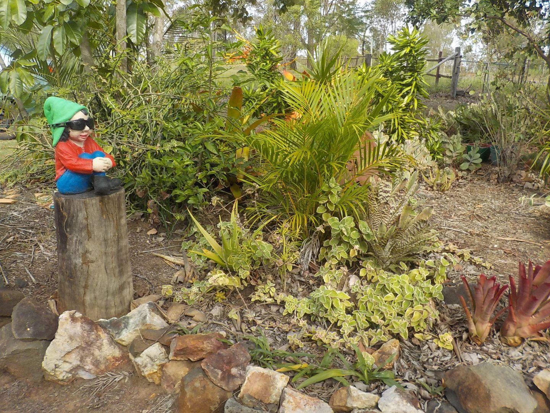 South Kolan QLD 4670, Image 0