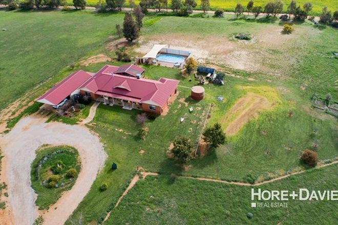 Picture of 61 Tathra Drive, JUNEE NSW 2663