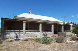 Picture of 702 Corny Point Road, Corny Point SA 5575