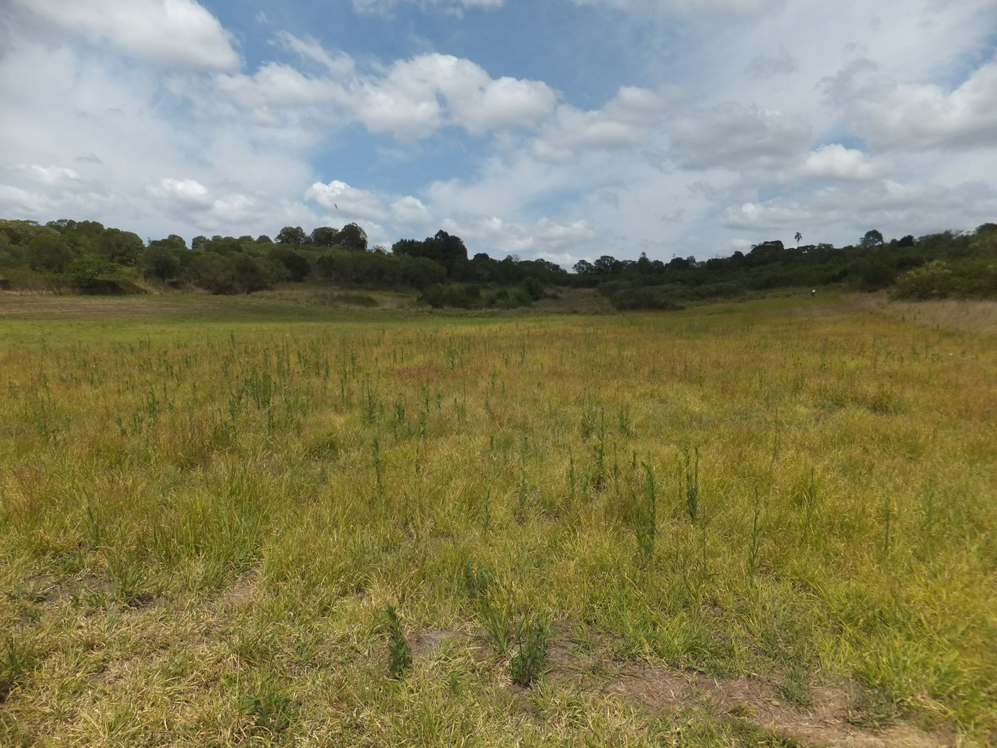 Lot 35/28 OUTLOOK DRIVE, Childers QLD 4660, Image 1