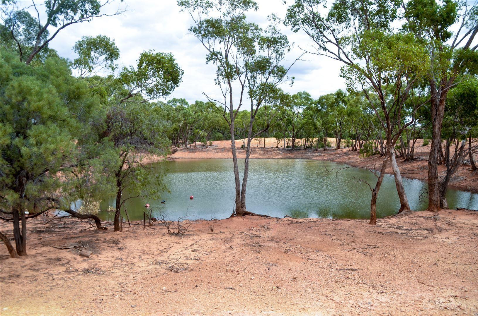 * Tara, Cooneybar Road, Cobar NSW 2835, Image 1