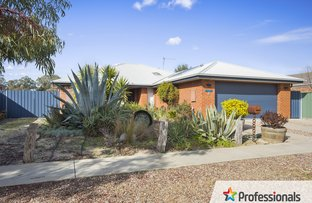 Picture of 3 Rosea Court, Ascot VIC 3551