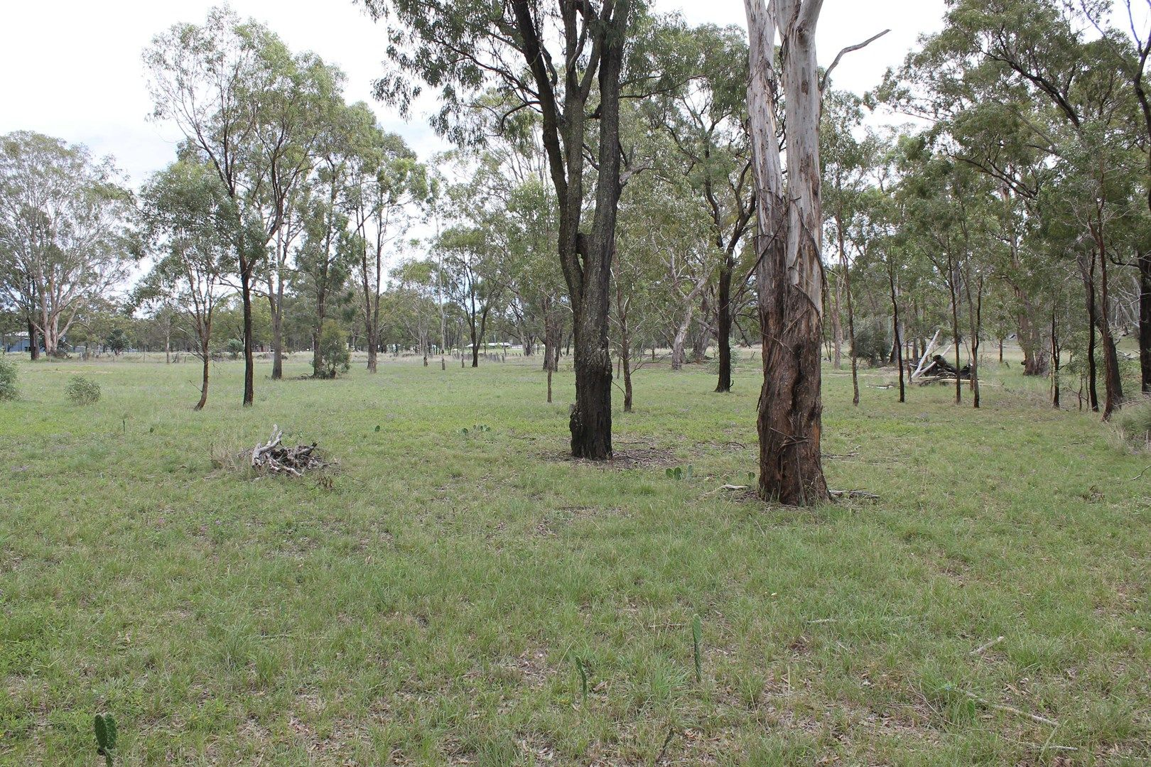 Lot 34 & 35 Elliot St, Pratten QLD 4370, Image 0
