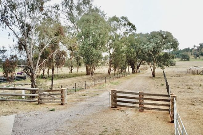 Picture of Lot 142 Part 121 Martins Lane, TAMWORTH NSW 2340