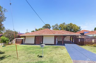 Picture of 27 Loris Way, Kardinya WA 6163