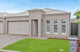Picture of 5A Albion Terrace, Campbelltown SA 5074