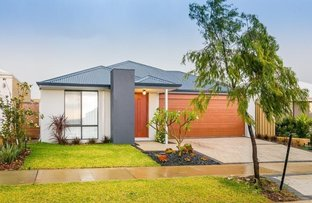 11 Wetherby Link, Butler WA 6036