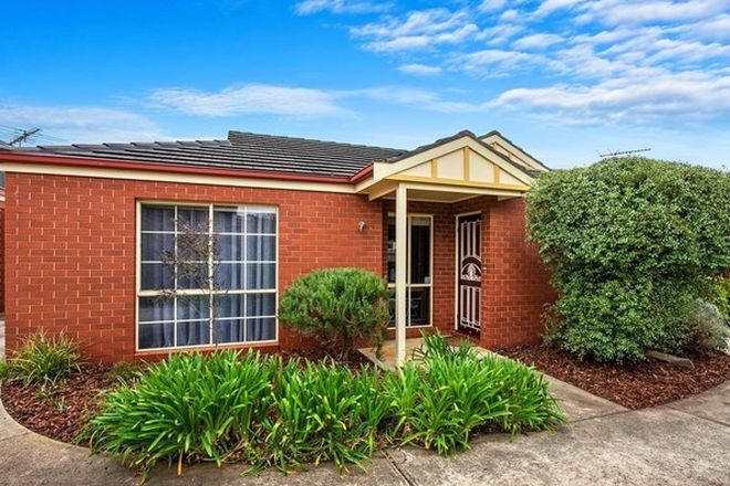 Picture of 2/48 South  Street, BELMONT VIC 3216