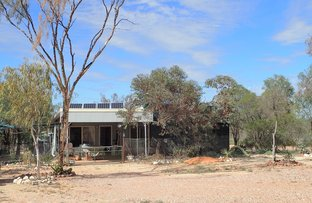 Picture of WLL 16055 Sims Hill, Lightning Ridge NSW 2834