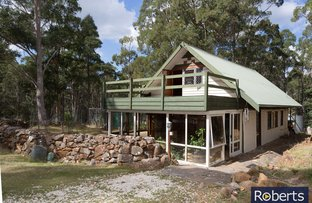 Picture of 505 Larcombes Rd, Reedy Marsh TAS 7304