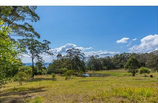 905G Main Western Road, Tamborine Mountain QLD 4272