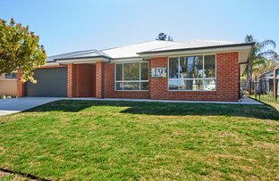 Picture of 19 Tinga Cres, Kooringal NSW 2650