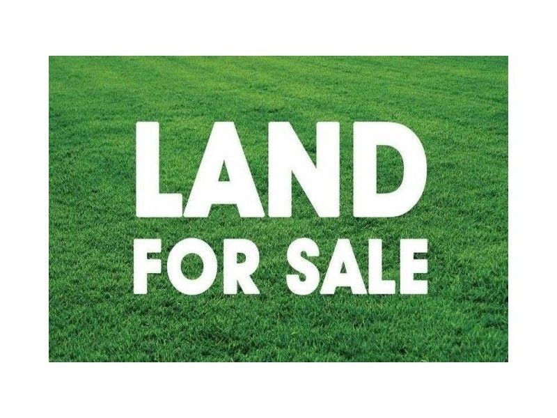 Lot 23 Proposed Road, Spring Farm NSW 2570, Image 1
