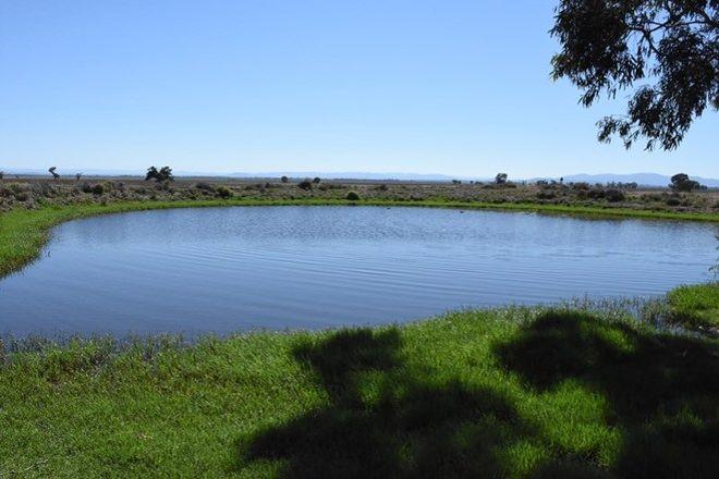 Picture of 431 Glencoe Road, GUNNEDAH NSW 2380