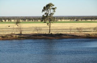 Picture of 986 ACRES GRAZING & FARMING, Tara QLD 4421