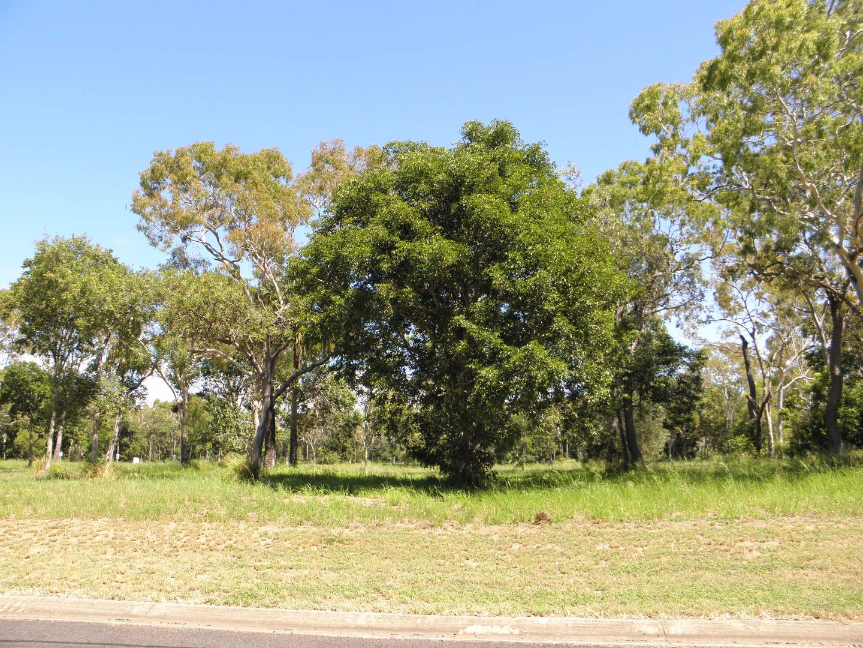 316 Sylvan Drive, Moore Park Beach QLD 4670, Image 1