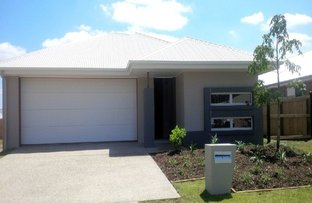 Picture of 9 Denham Circuit, Pimpama QLD 4209