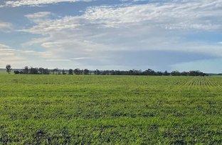 Picture of 7036 Tod Highway, Karkoo SA 5632
