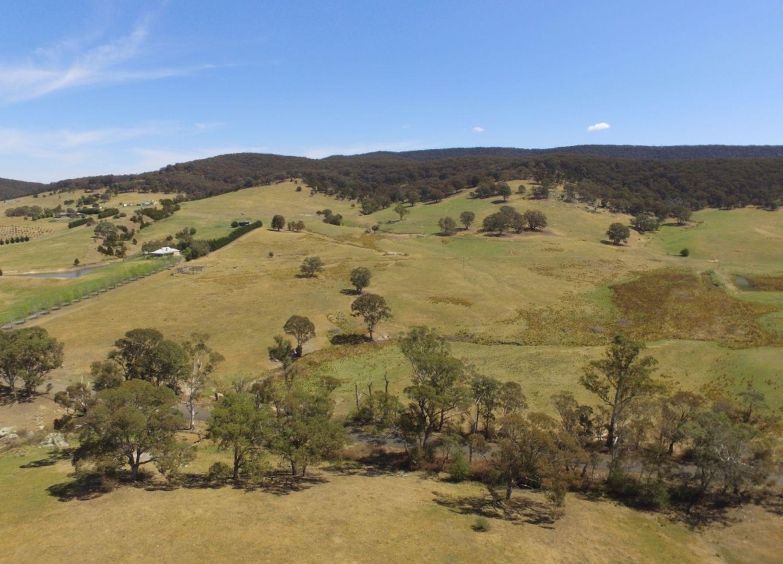 1177 Towrang Road, Towrang NSW 2580, Image 1