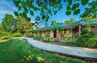 Picture of 241 Hydes Creek Road, Bellingen NSW 2454