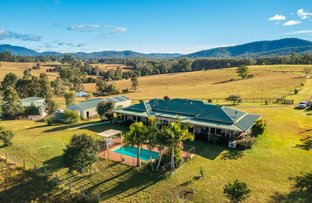 Picture of 231 Upper Rollands Plns Rd, Rollands Plains NSW 2441