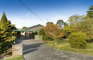 Picture of 19 Anne Street, Rosebud VIC 3939