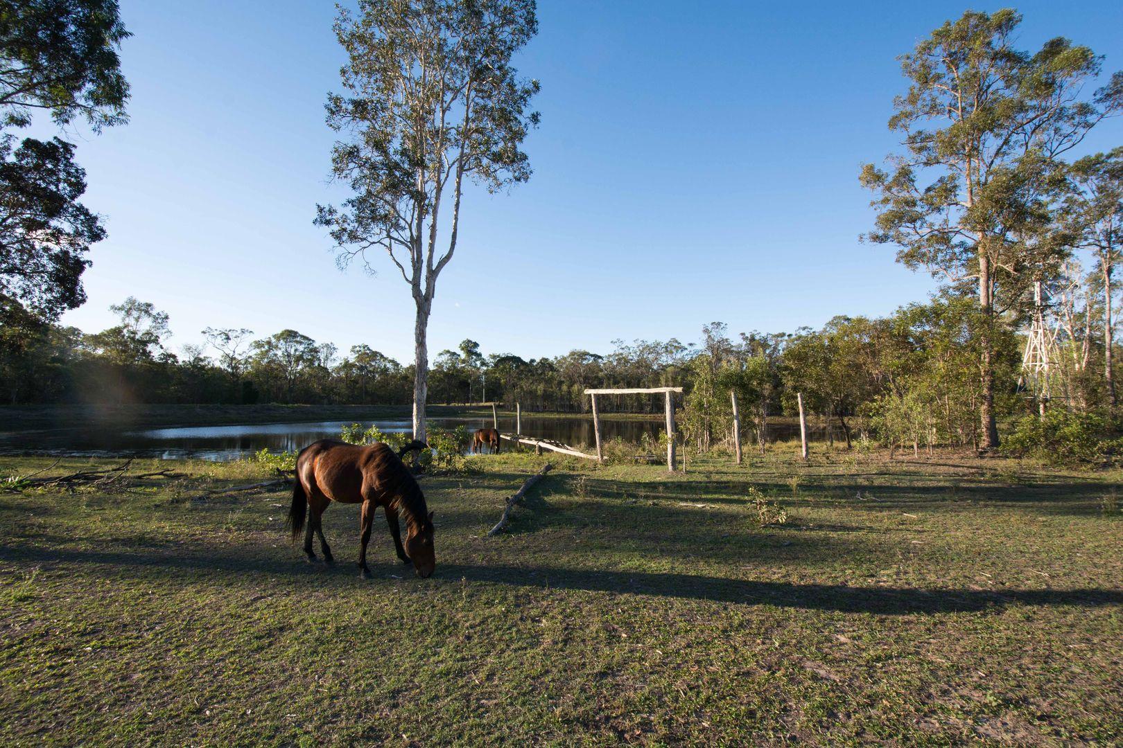 30 Mattons Road, Avondale QLD 4670, Image 0