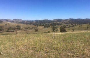 Picture of 1257 Windeyer Road, Mudgee NSW 2850