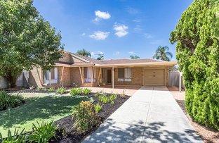 Picture of 98 Brown Crescent, Seville Grove WA 6112