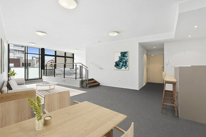 Picture of 301/747 Anzac Parade, MAROUBRA NSW 2035