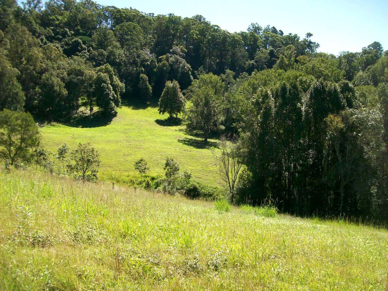 59 Old Brierfield Road, Bellingen NSW 2454, Image 2