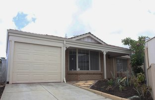 Picture of 37 Amadeus Gardens, Joondalup WA 6027
