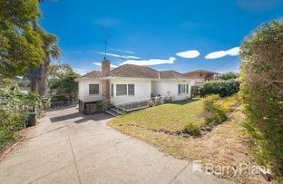 Picture of 73 Vincent Street, Oak Park VIC 3046