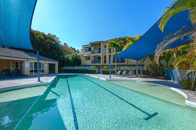 Picture of 93/88-98 Limetree Parade, RUNAWAY BAY QLD 4216