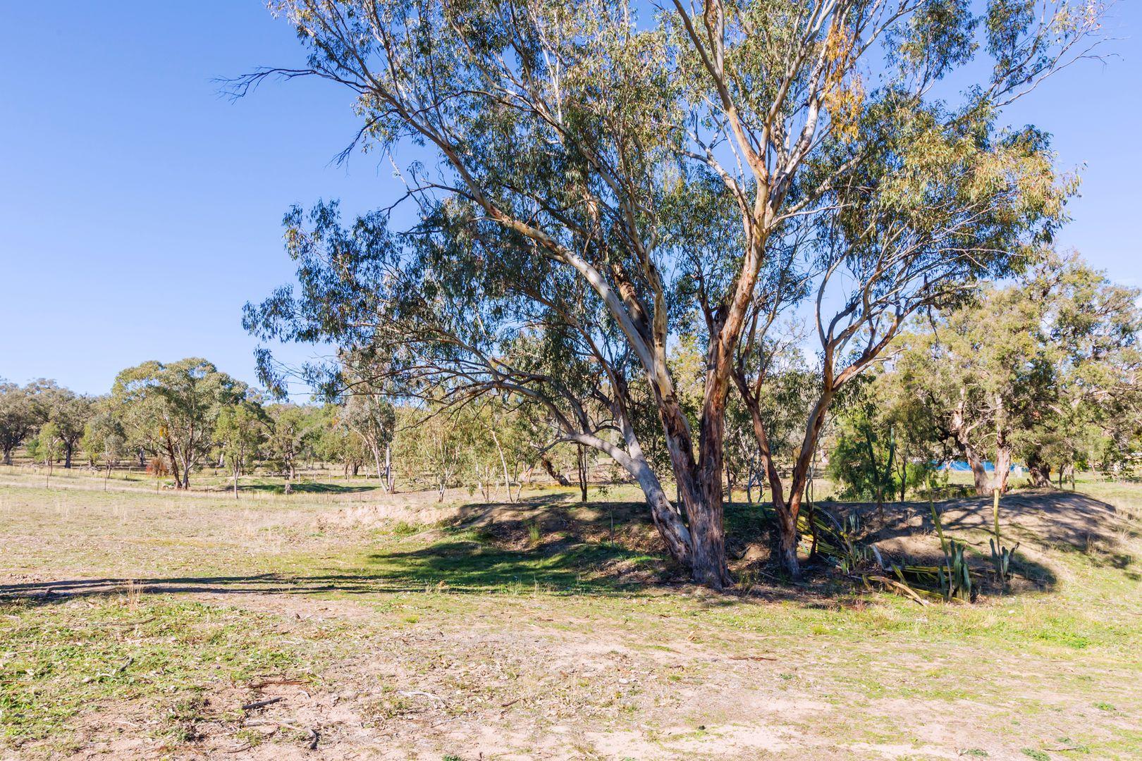 664 Daruka Road, Tamworth NSW 2340, Image 2
