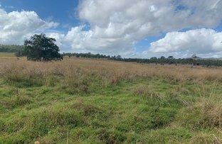 Picture of 3267 Marlborough Sarina Road, Sarina Range QLD 4737