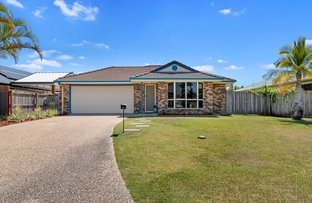 Picture of 8 St James Court, Little Mountain QLD 4551