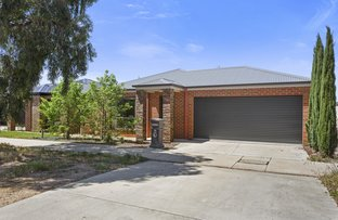 Picture of 115 St Killian Street, White Hills VIC 3550