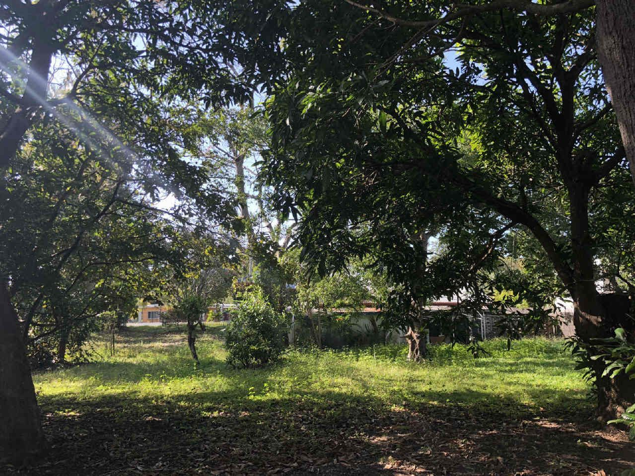 273 SLADE POINT ROAD, Slade Point QLD 4740, Image 2
