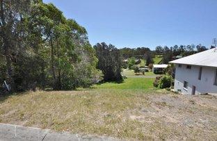 14 River Oak Crescent, Scotts Head NSW 2447