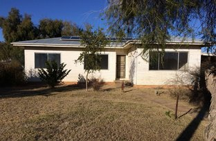 Picture of Warren NSW 2824