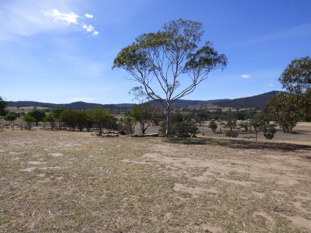 "3133 Olympic Highway ""The Grange"", Cootamundra NSW 2590, Image 1"