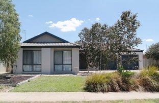 Picture of 12 Glencoe Boulevard, Moama NSW 2731