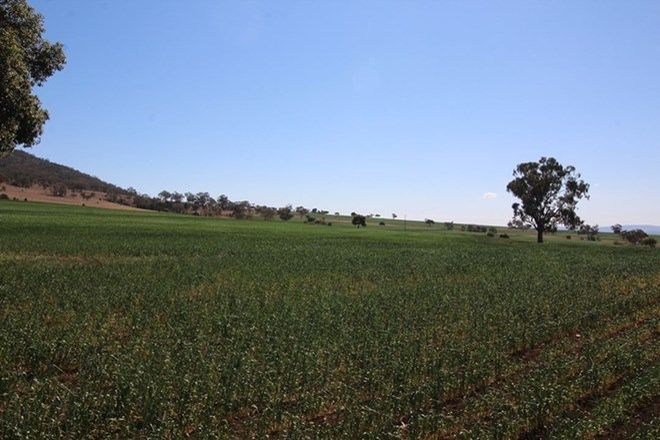 Picture of Uplands, SPRING RIDGE NSW 2343