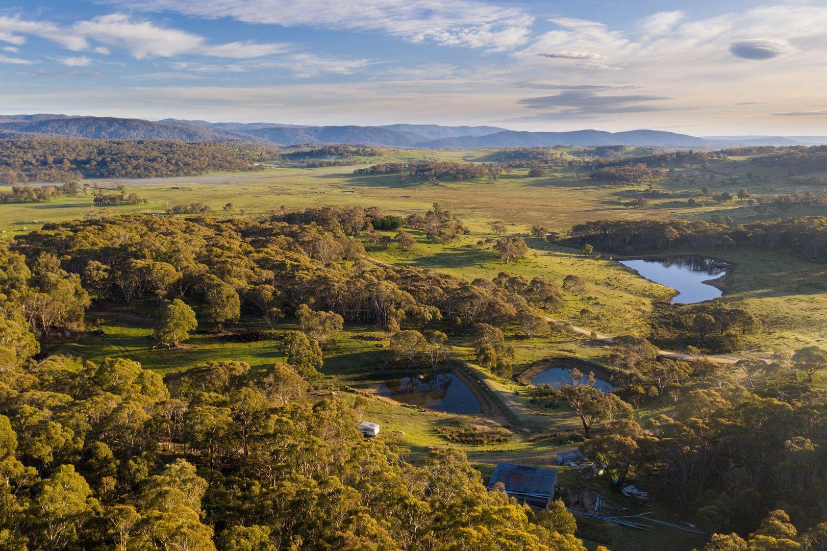69 Old Grosses Rd, Ingebirah NSW 2627, Image 0