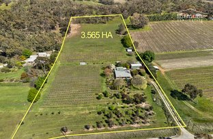 Picture of 8271 Horrocks  Highway, Sevenhill SA 5453