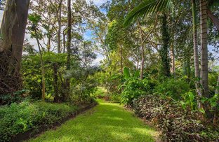 Picture of 51 Golf Links Road, Buderim QLD 4556