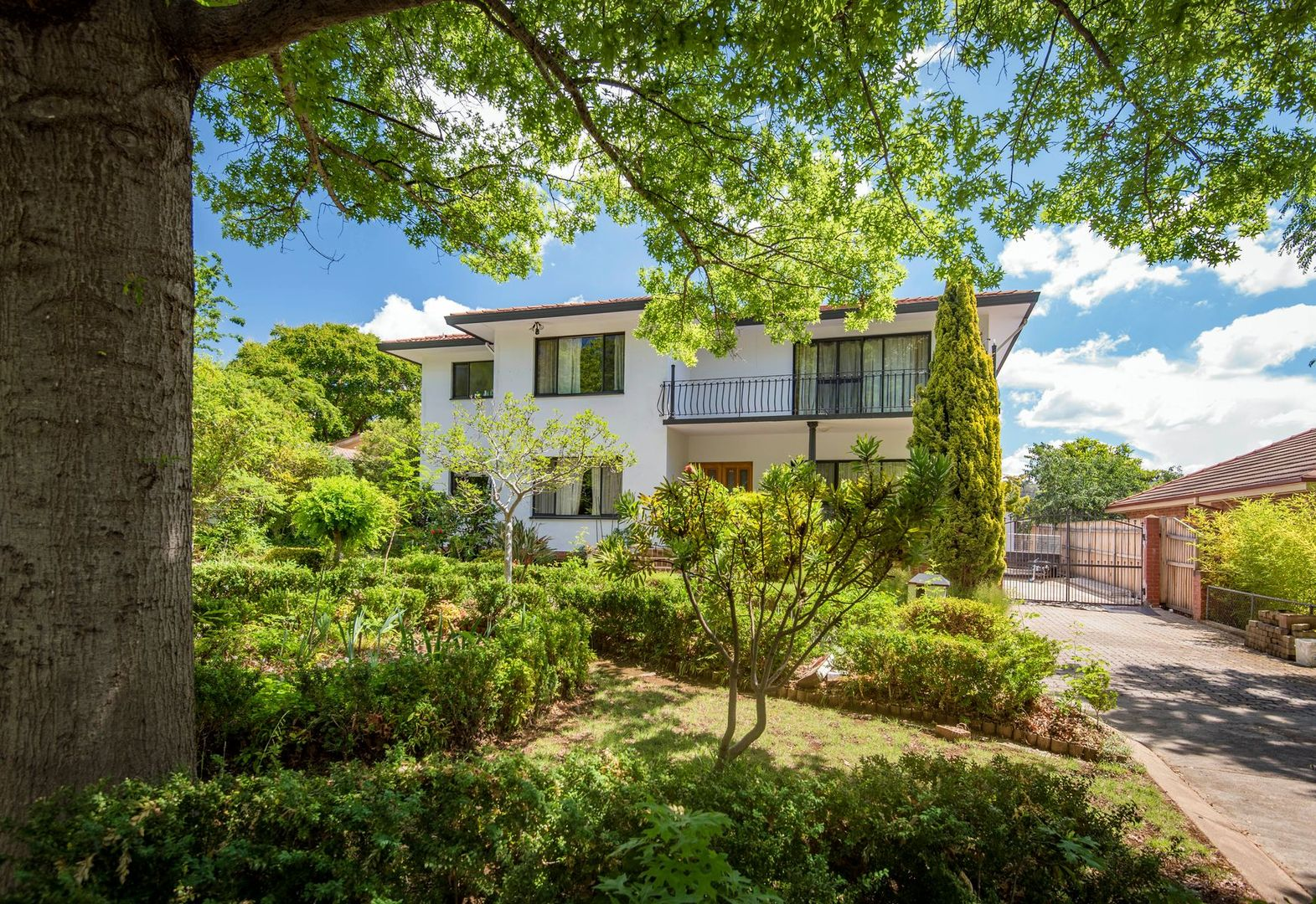 100 La Perouse Street, Griffith ACT 2603, Image 0
